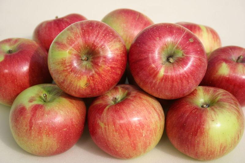 Яблони сорта с фото - уэлси