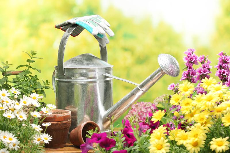 Садоводство и огородничество для начинающих - полив
