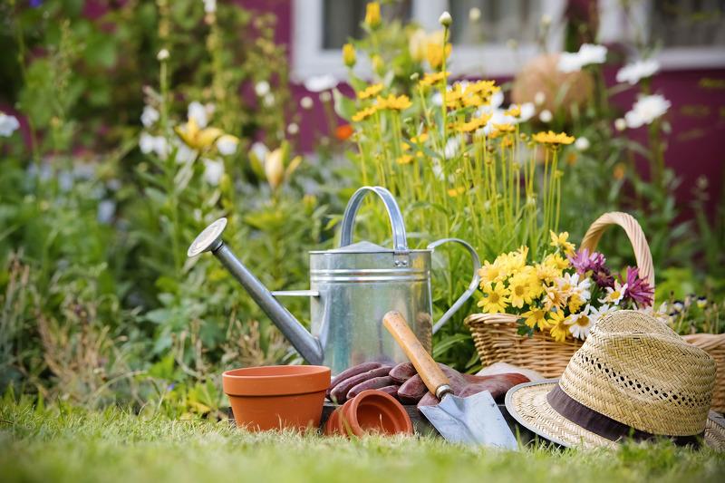 Весенняя обработка сада и инвентарь для нее