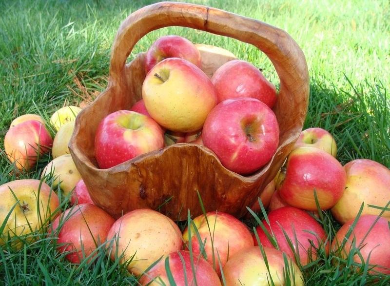 Содержание витамин в яблоках