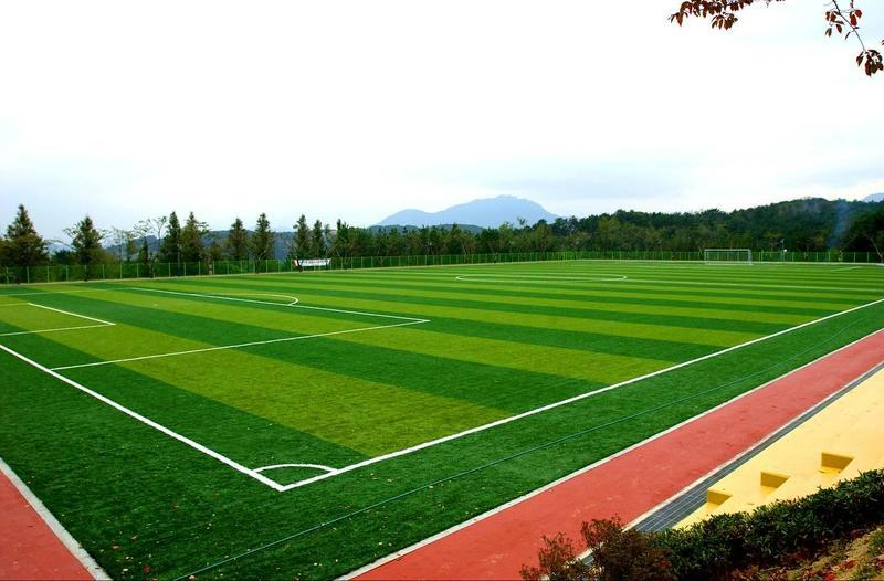 Спортивные рулонные газоны