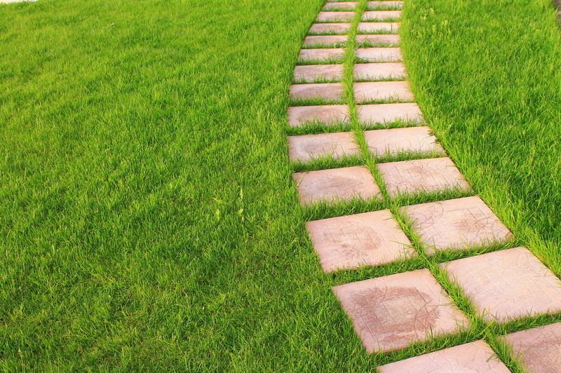 Унивресальная газонная трава в рулонах