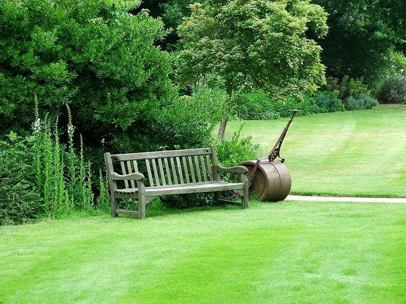 Английский газон фото