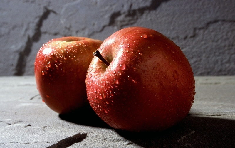 Фуджи сорт яблок – сбор урожая и его хранение