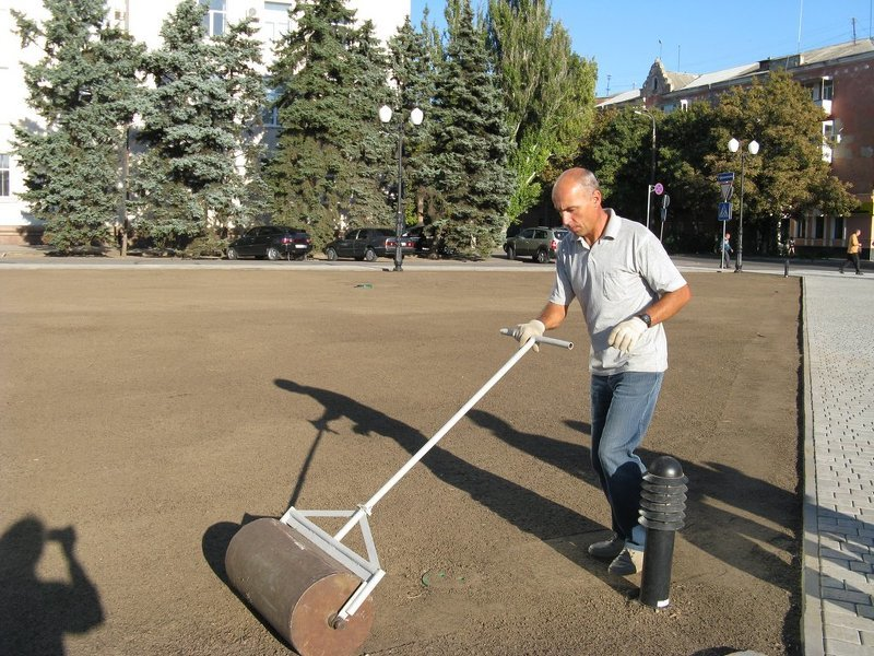 Как посеять газонную траву,  удобрять и подготавливать почву