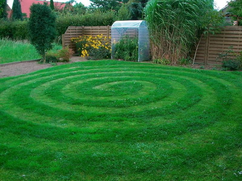 Газонная трава как сажать и подбирать травосмеси