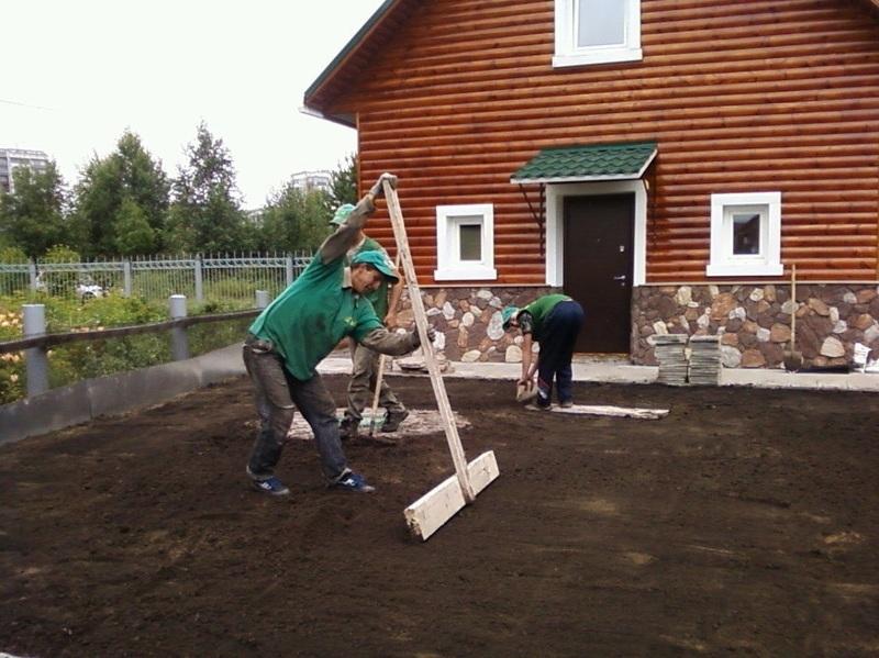 Как устроить газон своими руками