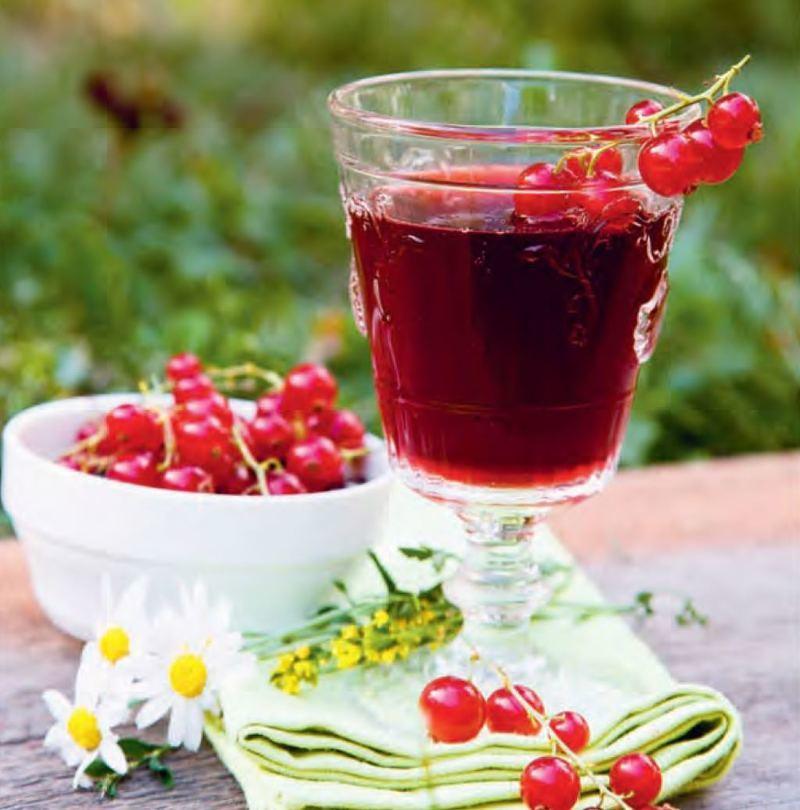 Красный корень рецепт настойки на водке