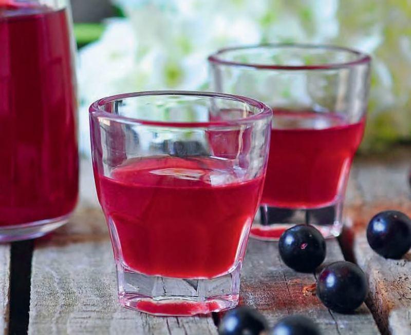 вино из черной смородины рецепт приготовления неповторимый аромат