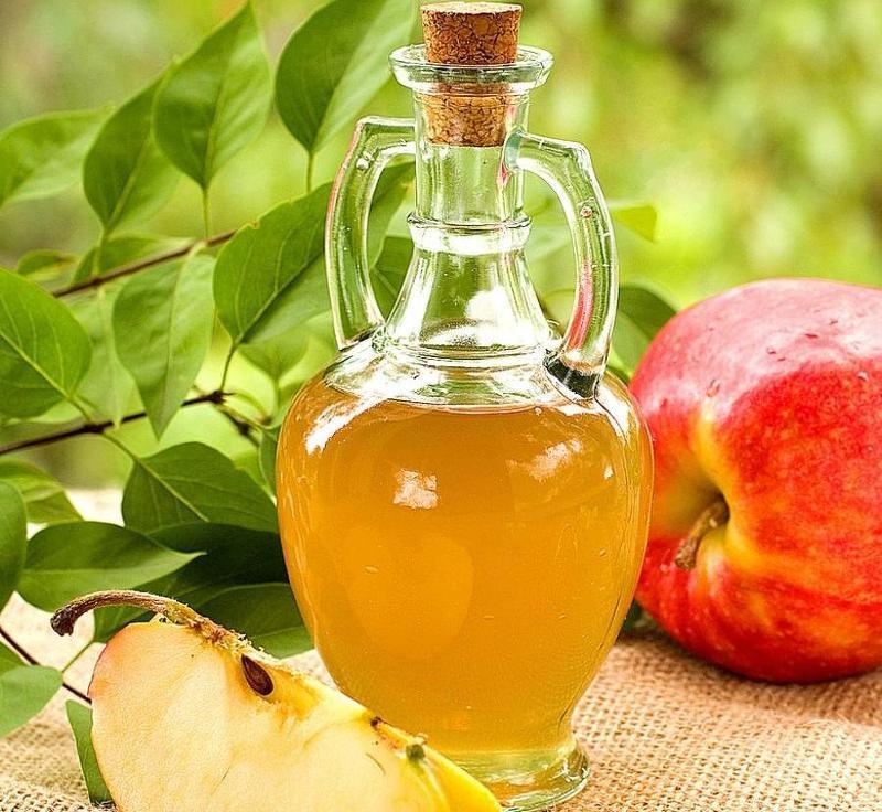 Как сделать яблочный сидр фото 828