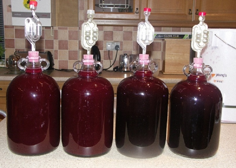 Вино из сливового варенья в домашних условиях простой