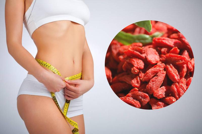 Полезные свойства и применение ягоды годжи