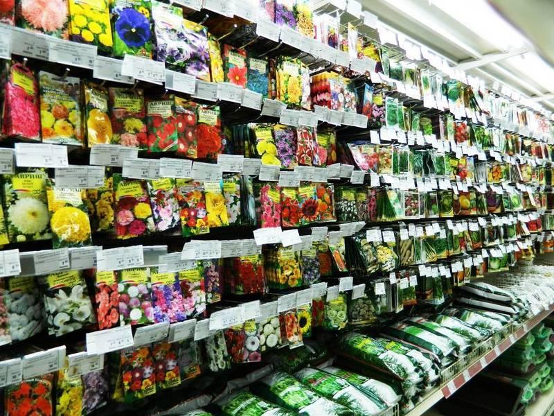 Продажа семян и рассады 209