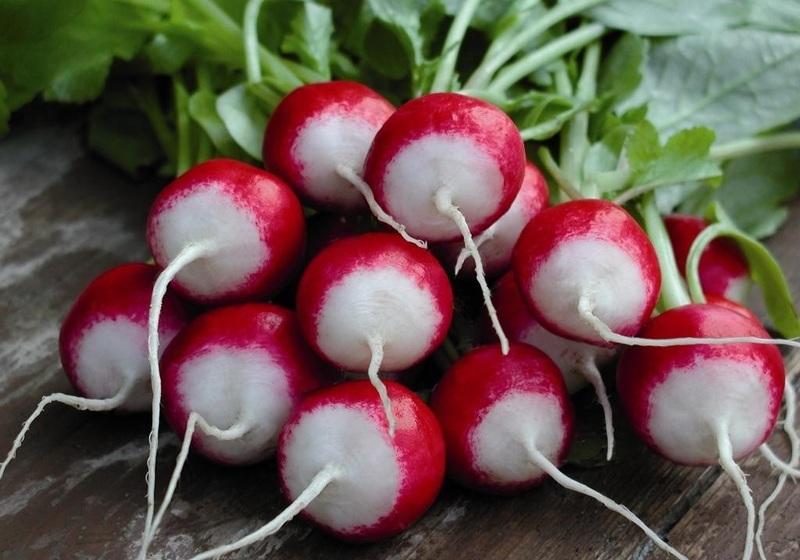 Урожай редиса собран, чем заполнить грядки