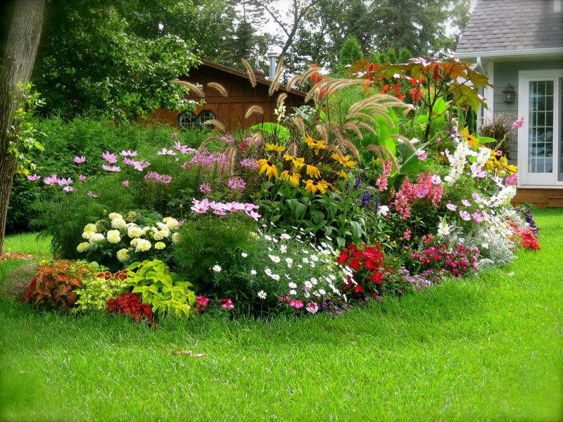 Цветы ландшафтный дизайн