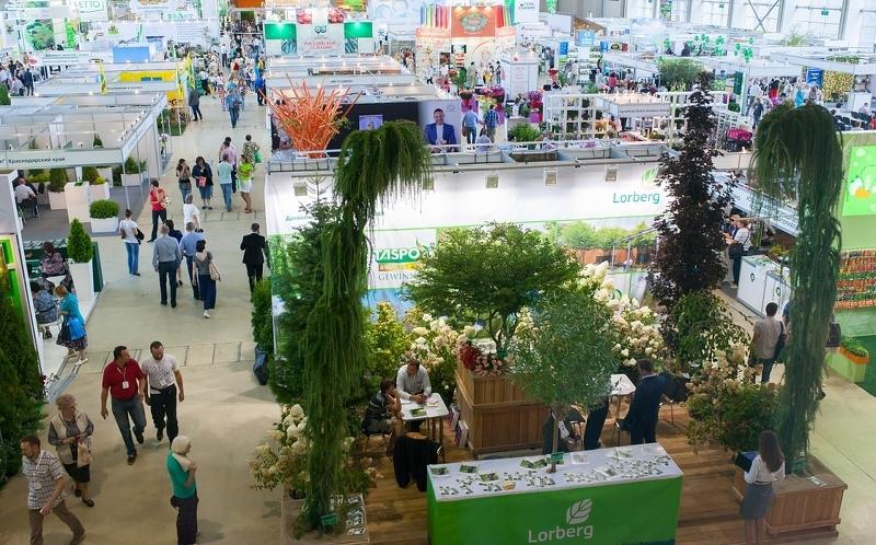 Краснодар выставка цветов 2017