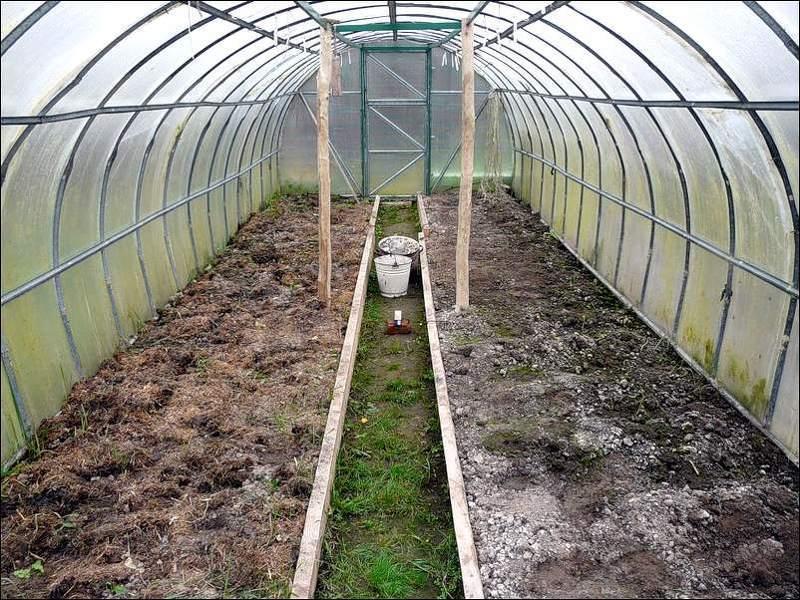 Готовим грядки под выращивание баклажанов в теплице