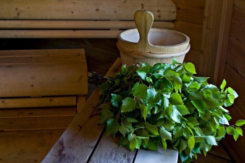 Как правильно готовить веники для бани: сроки сбора, когда заготавливать, когда ломать, как хранить и сушить на зиму