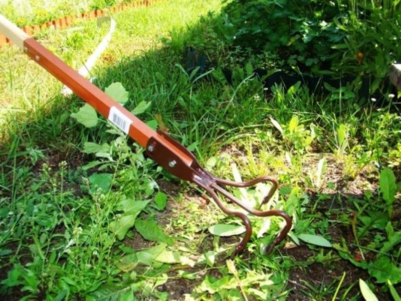 Борьба с сорняками на огороде ручным культиватором