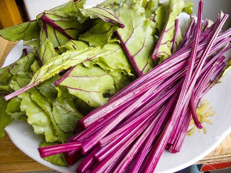 Ботва свеклы содержит много витаминов и полезна для организма