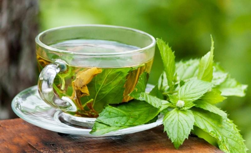 Чай из лимонного базилика - самый ароматный и очень вкусный