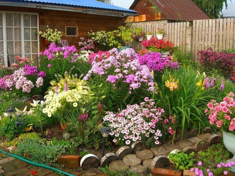 Цветы в саду позволяют создать невероятно красивые композиции
