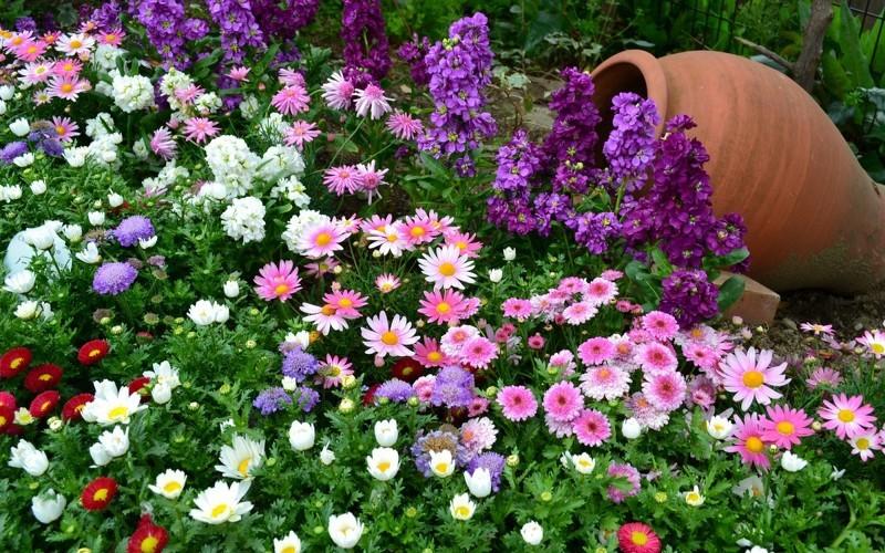 Эффектней смотрится одна большая композиция из цветов, чем несколько маленьких