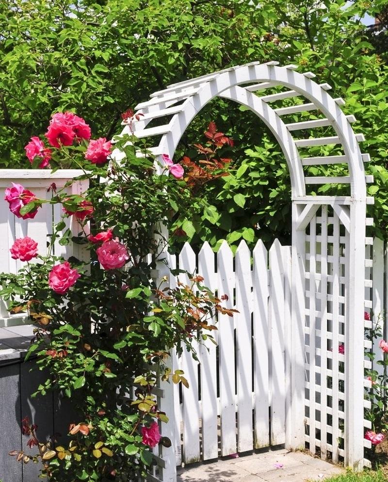Деревянная арка для плетущихся цветов