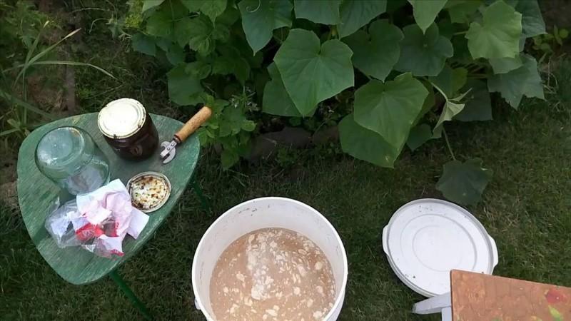Рецепты приготовления дрожжевых подкормок