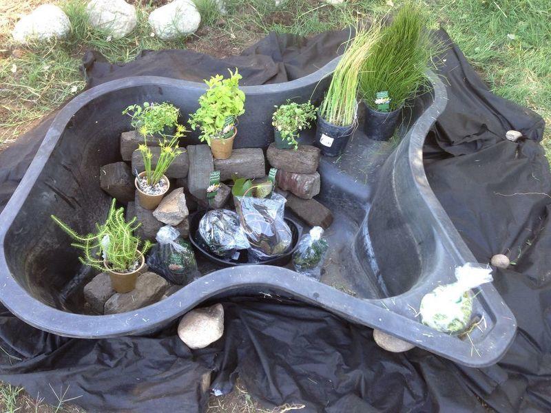 Готовая форма для пруда в саду