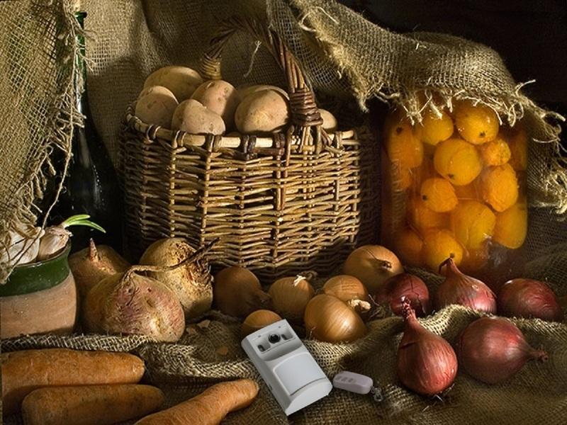 Хранение овощей до весны