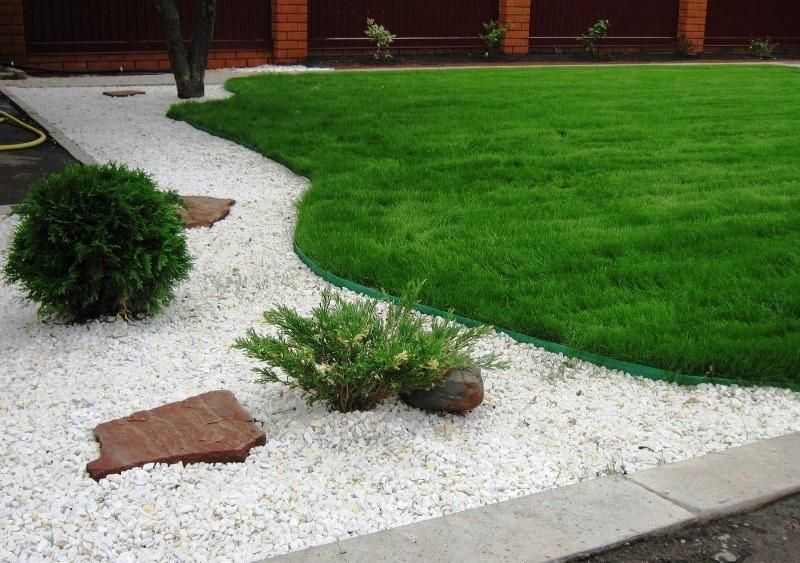 Идеальный газон для дачного участка
