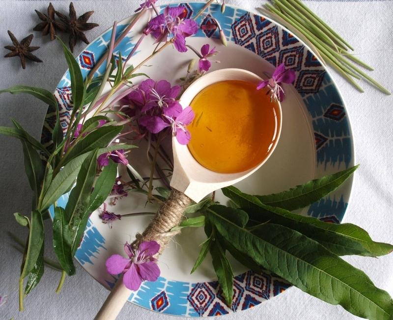 Иван чай или Кипрей с медом - поможет от простудных заболеваний