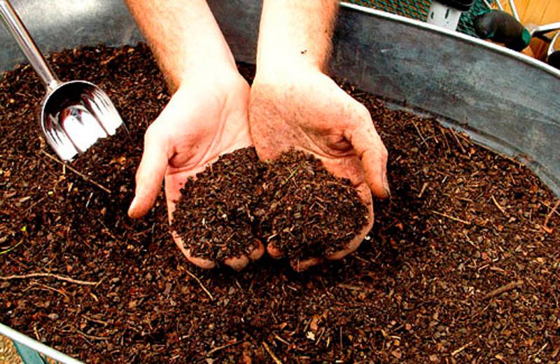 Компостирование почвы под редис