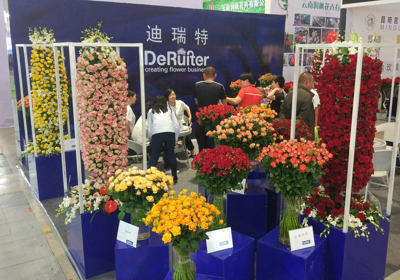 Новинки селекции на Kunming International Flower Expo