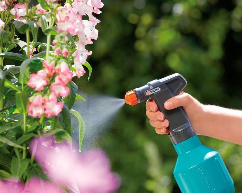 Как избавиться от муравьев на клумбе с цветами
