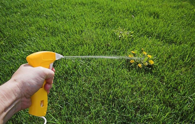 Обработка газона гербицидами направленного действия