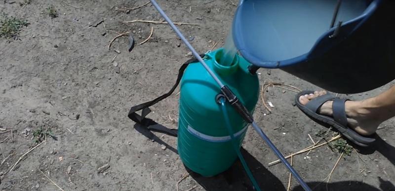 Подготовка к опрыскиванию огурцов от болезней содой