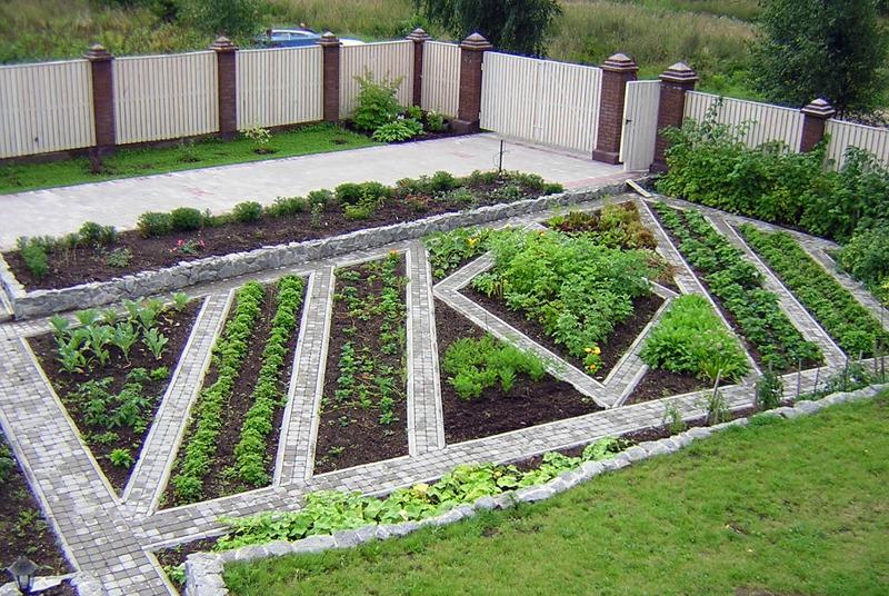 for Vegetable plot design ideas