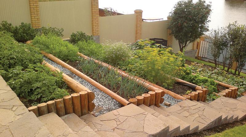Декоративный огород: как сделать красивые грядки на…