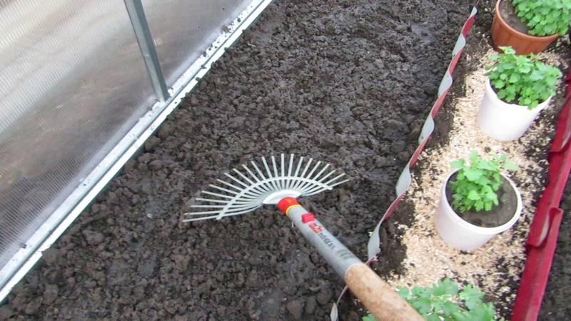Подготовка грядок к посеву огурцов