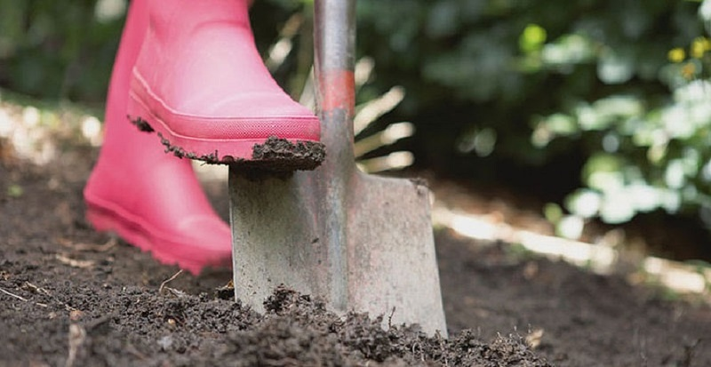 Подготовка почвы к высаживанию овощных культур