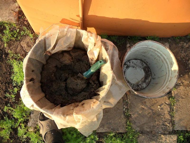 Подготовка удобрения для флоксов на основе компоста