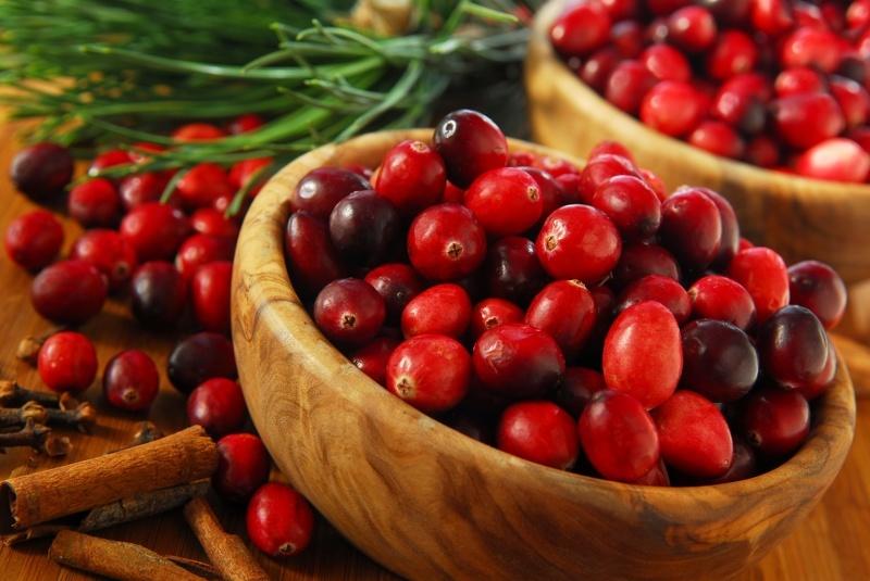 Полезные свойства клюквы свежей