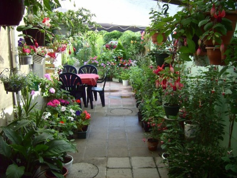 Прекрасная терраса с цветами