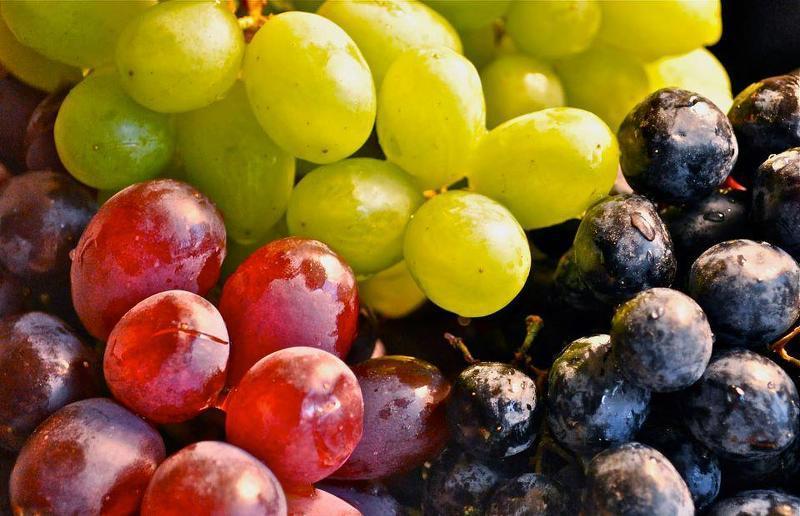 винограда при диете
