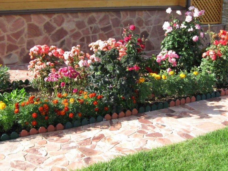 Рабатка - прямоугольная клумба с миксом цветов