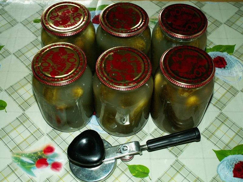 Рецепт засолки огурцов на зиму в 2 литровых банках