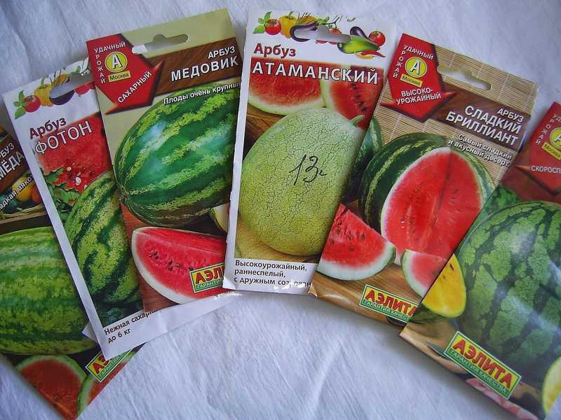 Семена арбузов для Сибири
