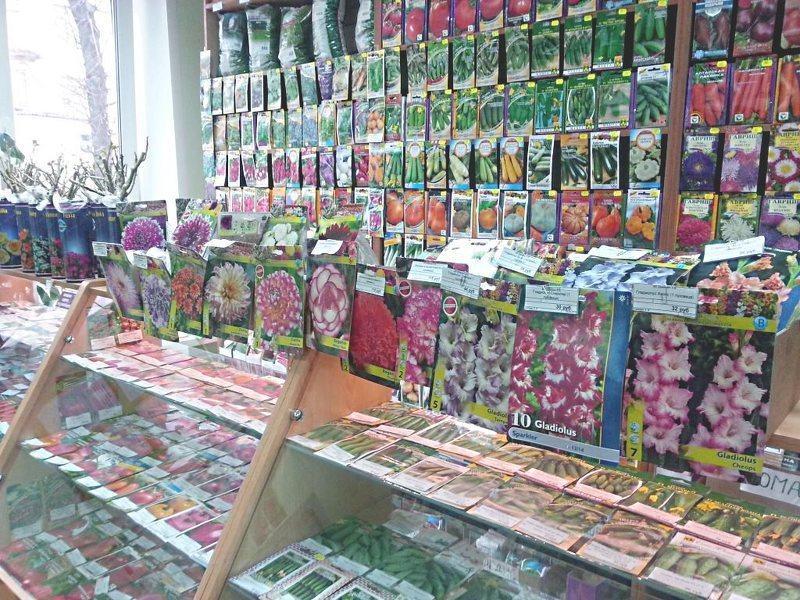 Магазин семян в г лубны